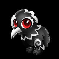 Haka Kiwi Baby