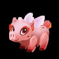 Pigmy Juvenile