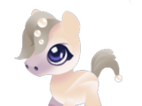 Pearl Pony