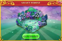 Jun-Jul 2020 VelvetForest Popup