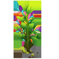 Sprinkle Spruce