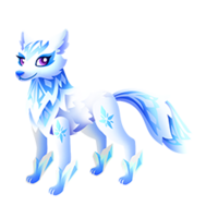 Winter Equifox Adult
