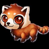 Red Panda Baby