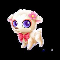 Little Lamb Baby