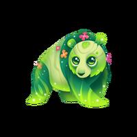 Pandaffodil Epic