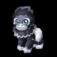 Silverback Gorilla Juvenile