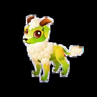 Sheepdog Juvenile