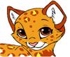 JaguarpootBadge.jpg