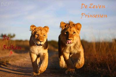 Zimbabwe-antelope-park-3