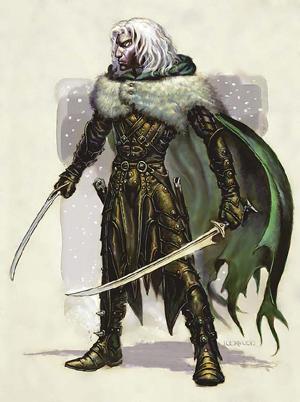 Fantasy Art Dark Elf Warrior