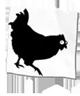 Shadow chicken
