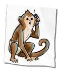 Helper monkey