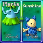Sunshine Friends SR