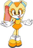 Sonic boom sc cream