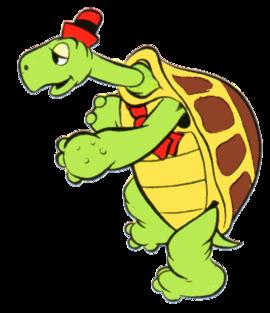 Toby Tortoise DMKC