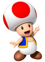Toad NKCUK