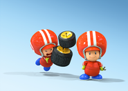 Toad Mechanics