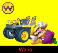 Wario in Mario Kart 9