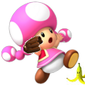 ToadetteMS3DS