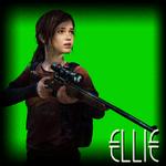 EllieSelectionBox