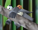 Woomy sleeping on a Pangoro