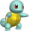 Squirtle union