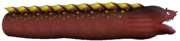 SMO Maw-Ray 1