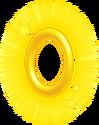GoldenringNSMB2