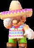 Poncho Sombrero Mario 4