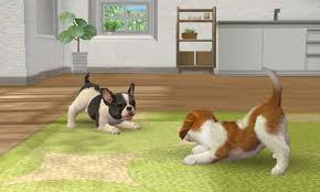File:Nintendogs Plaza.jpg