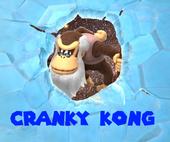 Cranky Kong M&DK