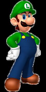 LuigiMarioPartyDS