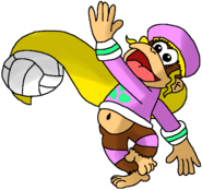 Dixie Kong Spikers