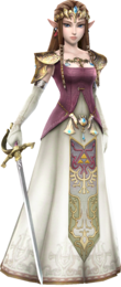 Hyrule Warriors Zelda TP Clothes