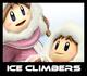 SSBCalamity - IceClimbersIcon
