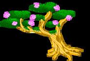 Bonsai Tree Good