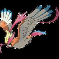 018Mega Pidgeot