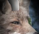 Star Fox (2019 film)