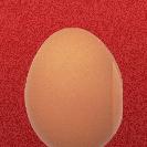 Egg Board Warriors