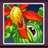 ACL JMvC icon - Alien Green