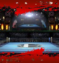 SSBEndeavor Boxing Ring