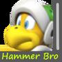 Hammer Bro Image