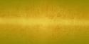 SFL Yellow