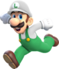 ACL - SSBSwitch recolour - Luigi 1
