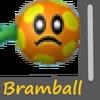 Bramball Image