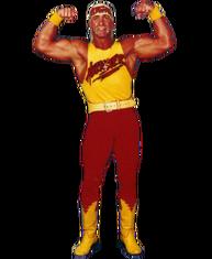 Hulk Hogan '95