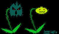 Weedmask
