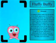 FluffyBuffyProfile