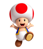 MKXL Toad
