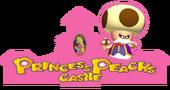 PrincessPeachsCastleArtMPE